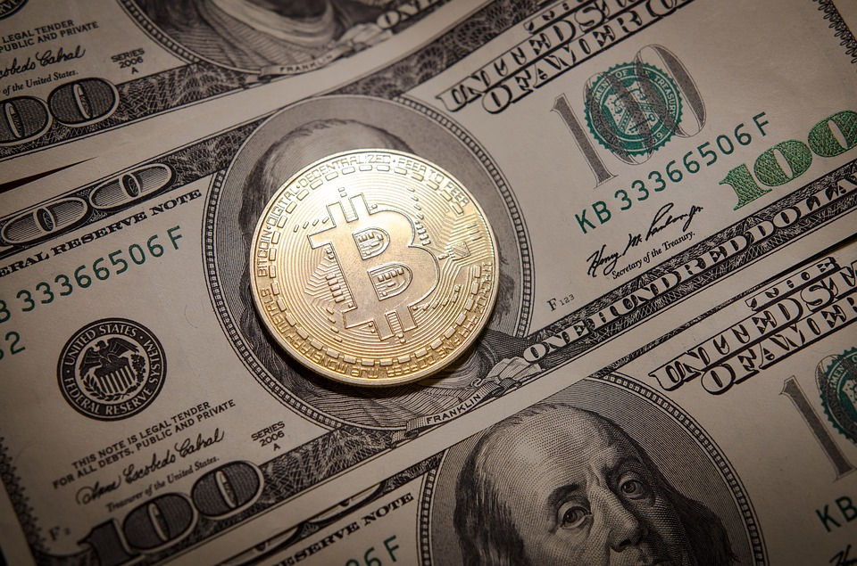 """Differences between """"digital currencies"""" and cryptocurrencies"""